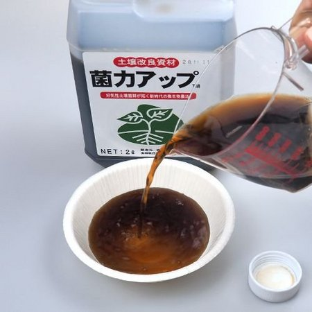 kinryoku-up-2-b.jpg