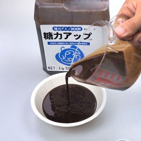 toryoku-up-2-b.jpg