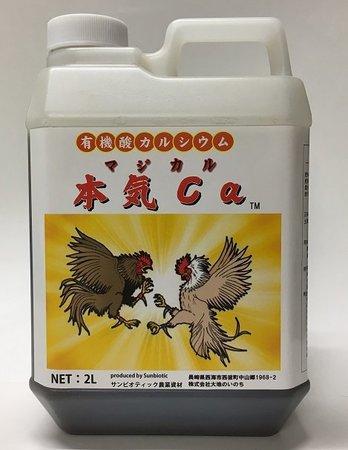 有機酸カルシウム「本気Ca」(マジカル)