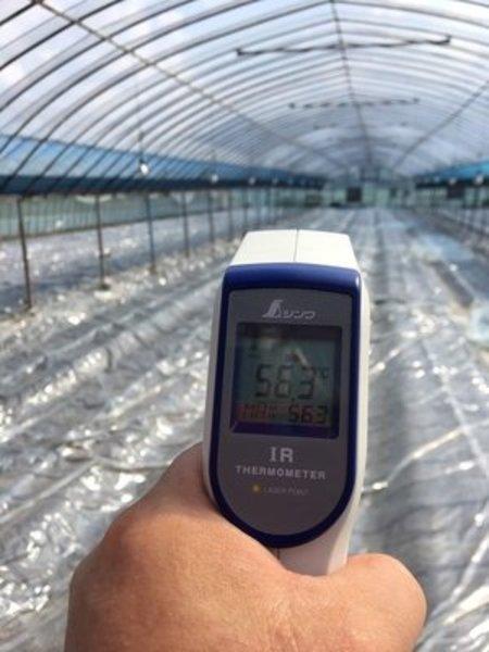ハウス太陽熱消毒の実例!土づくりで8割決まる